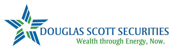 DSS logo jpg